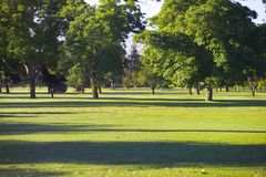 Evening at the park royalty free stock image