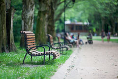 Evening in the park Royalty Free Stock Photography