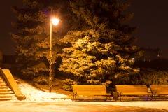 Evening Park with Lantern Royalty Free Stock Photo