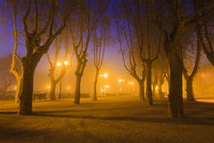Evening park near the walls of Aigues-Mortes. France. Royalty Free Stock Photo