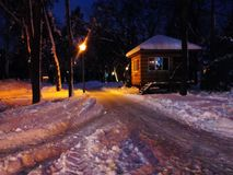 Evening park after snowfall stock photography