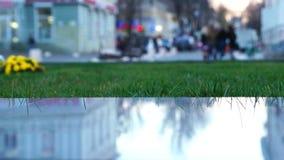 Evening parka w centrum miasta zbiory wideo