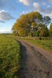 Evening path Royalty Free Stock Photos