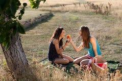 Evening picnic Stock Image