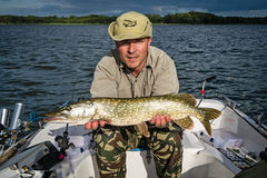 Evening pike fishing Royalty Free Stock Images