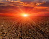 Evening on ploughed field Stock Photos
