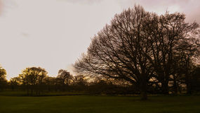 Evening pokojowego parka Obraz Stock