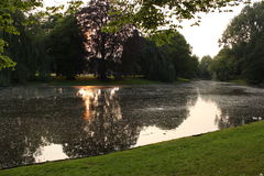 Evening at the pond in the park Royalty Free Stock Photos
