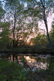 Evening pond. Quiet sunset by the pond royalty free stock photography