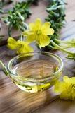 Evening primrose flowers next to a bowl of evening primrose oil Stock Image
