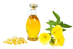 Evening primrose oil capsules Royalty Free Stock Image