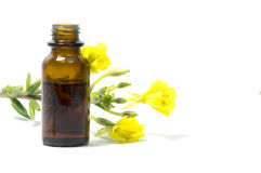 Evening primrose oil, flowers and a bottle, isolated on white Stock Photography