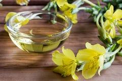 Evening primrose oil with evening primrose flowers Stock Photo