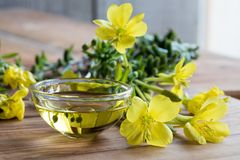 Evening primrose oil in a glass bowl. With fresh evening primrose flowers in the background Stock Photo
