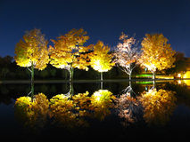 Evening reflection. An evening reflection of autunm trees Stock Image