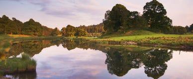 Evening reflection Stock Image