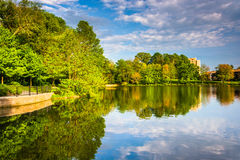 Evening reflections at Wilde Lake in Columbia, Maryland. Royalty Free Stock Image