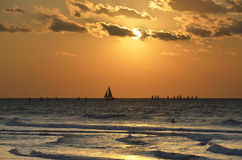 Evening regatta. Stock Image