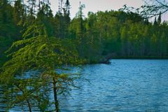 Evening at remote lake in forest in northern Minnesota. Evening at remote lake in forest near Bemidji in northern Minnesota stock photo