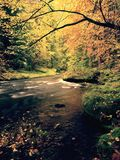 Evening at river in bright autumn colors. Humidity in air after rainy day. Royalty Free Stock Photography