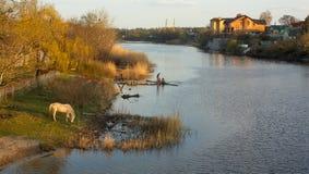 Evening at the river Stock Photos