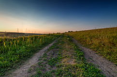 Evening road in steppe at sunset time. Meadow with rural road and beautiful sunset in summer Royalty Free Stock Photo