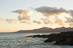 Evening at rocky coast of Lanzarote Stock Photo