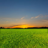 Evening rural scene Royalty Free Stock Image