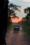 Evening safari in the savanna Royalty Free Stock Photos