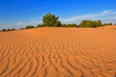 Evening sand desert Stock Photos