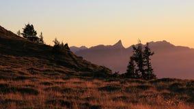 Evening scene on Mt Niederhorn Royalty Free Stock Photography