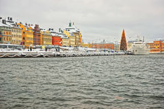 Evening scenery of the Old City of Stockholm with a Christmas tr Stock Photos