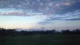 Evening scenery from window seat of a train in Queensland Australia stock video
