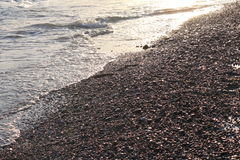 Evening sea beach with shingle in summer at sunset Royalty Free Stock Images
