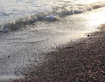 Evening sea beach with shingle in summer at sunset Stock Photography