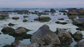 Evening on the sea stock footage