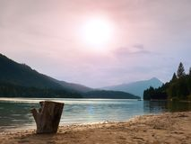 Evening shore of Alps lake. Beach with dead tree stump. Autumn at pond Stock Image