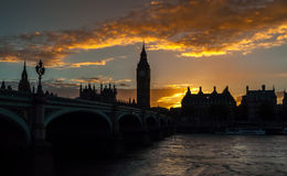 Evening Silhouettes Royalty Free Stock Images