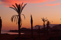 Evening sky. On the Red Sea shore in Egypt Royalty Free Stock Image
