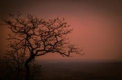 Evening Sky... Colourful eve in Sahyadri hills of Maharashtra, India during Summer Royalty Free Stock Photo