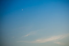 Evening sky and moon and bird Stock Images