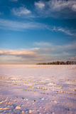 Evening sky over a snow-covered farm field in rural Carroll Coun Royalty Free Stock Image