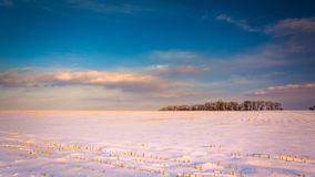 Evening sky over a snow-covered farm field in rural Carroll Coun Stock Photo