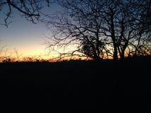 Evening sky Stock Photography