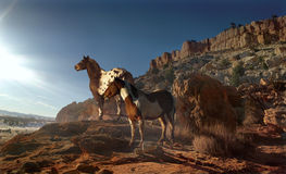 Evening Slendor. Two magnificent horses, and appaloosa and a pinto stand proudly on a rocky mountain slope watching the sunset Stock Photo