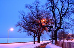 Evening snow on a path Royalty Free Stock Photography