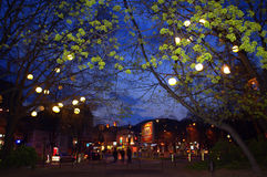 Urban crossroad evening spring green Royalty Free Stock Photos