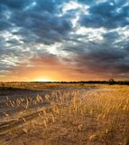 Evening steppe Stock Photo