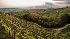 Evening storm in the vineyards. Storm in the vineyards of Friuli Venezia-Giulia, Italy royalty free stock photos