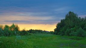 Evening summer landscape before the rain royalty free stock photos